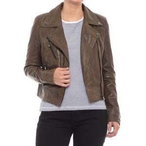 NWT Bod & Christensen Leather Jacket